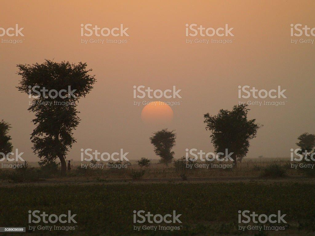 Coucher de soleil sur le Sahel stock photo