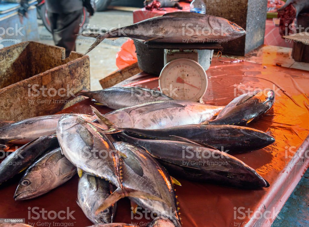 Counter with fish on Tomohon Traditional Market stock photo