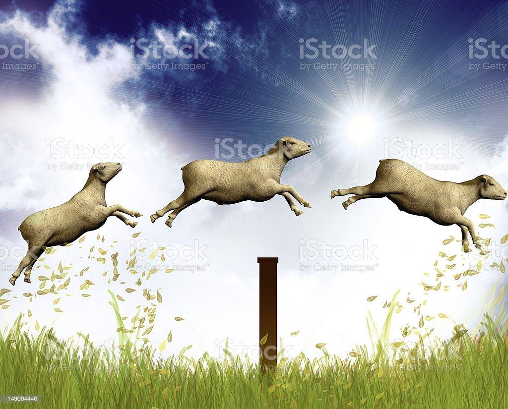 Counting jumping sheep stock photo