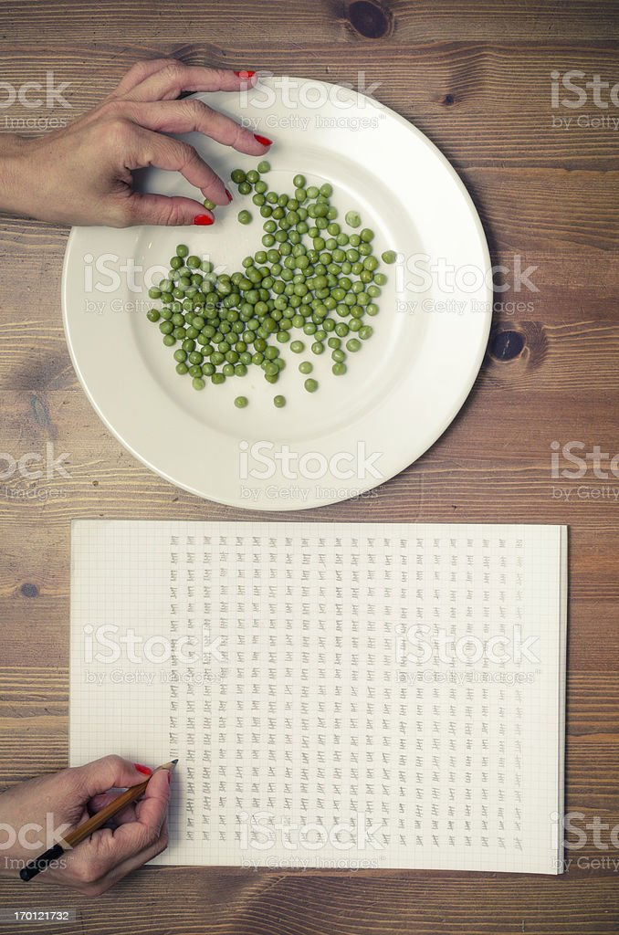counting peas stock photo