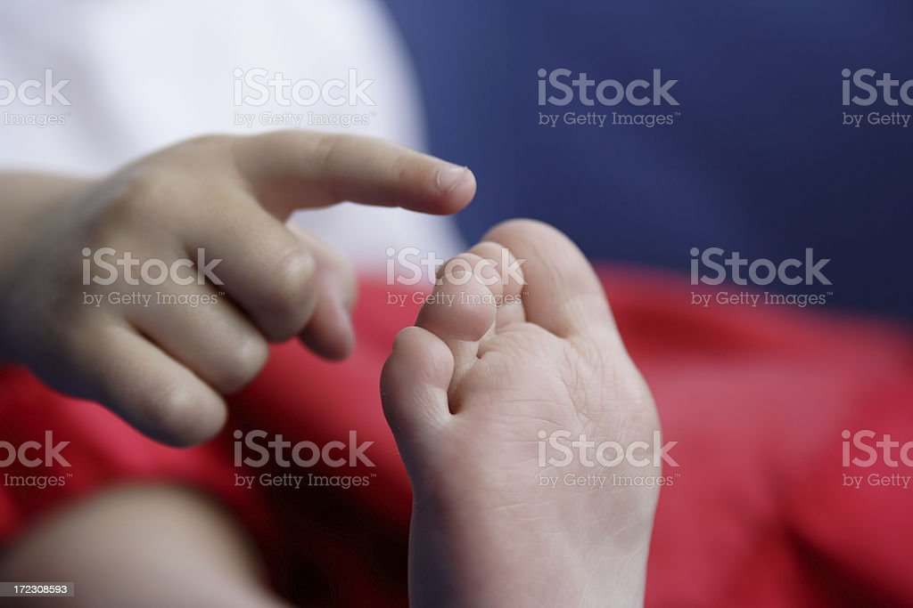 Counting Piggies royalty-free stock photo