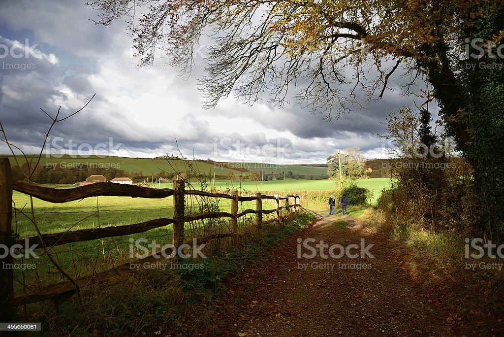 Country Autumn Walk stock photo