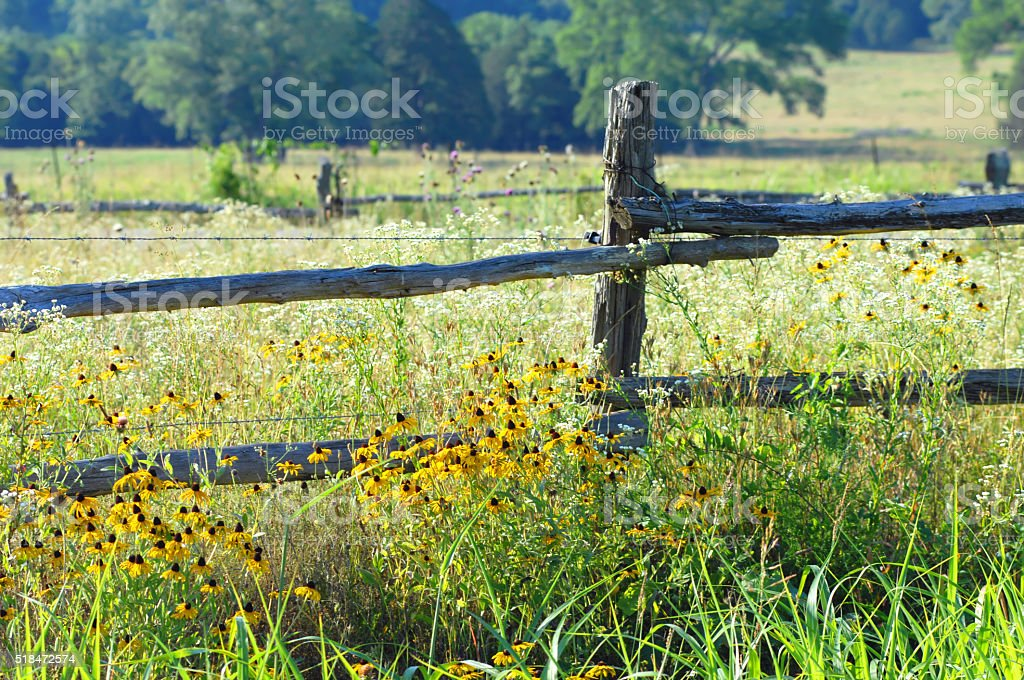 Country Byway stock photo