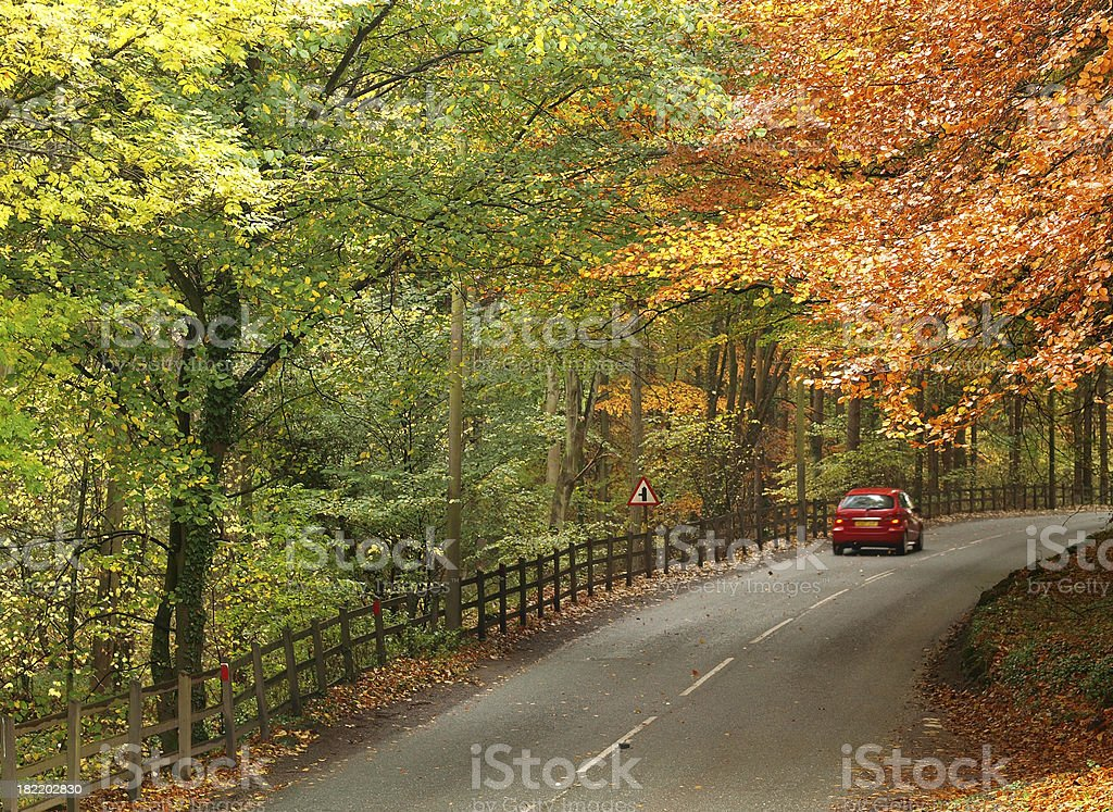 Country Drive royalty-free stock photo