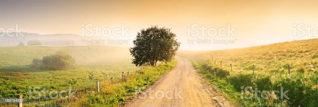 Country Farm Road through Foggy Landscape