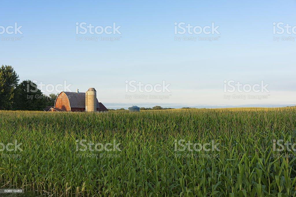 Country farm scene stock photo