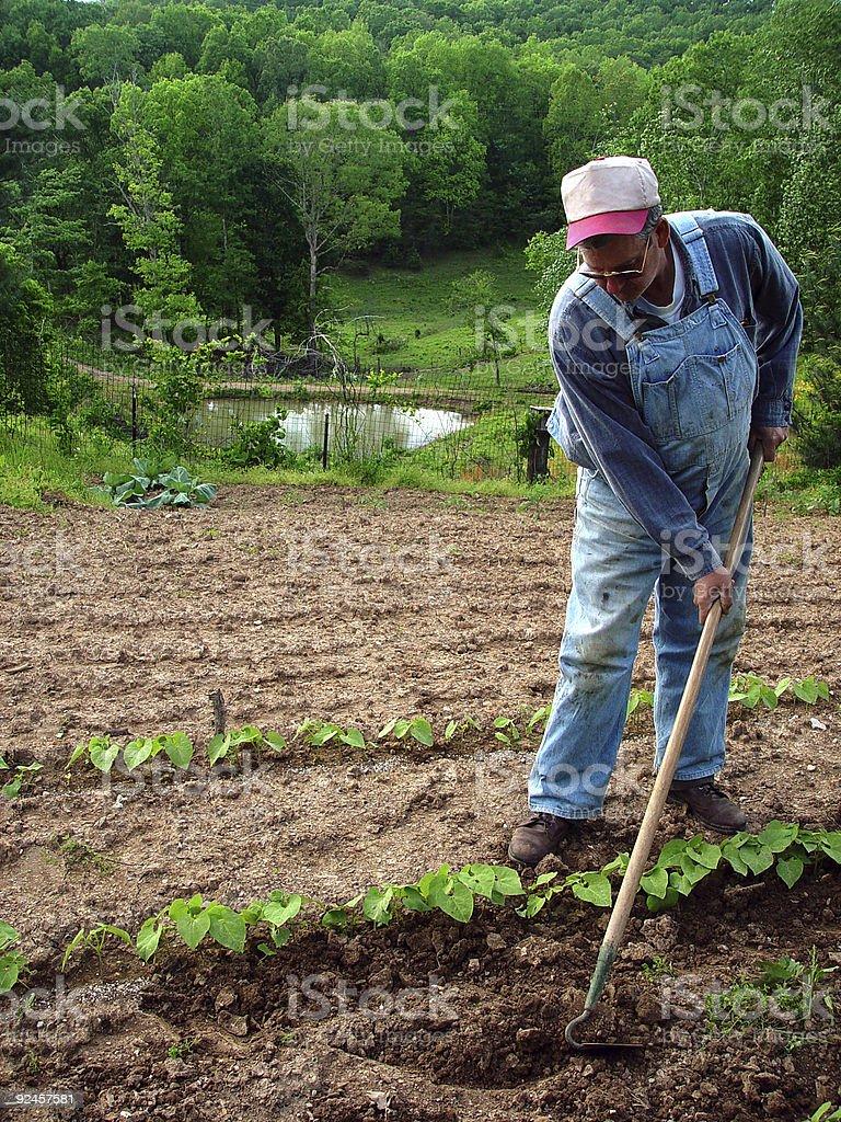 Country Farmer stock photo