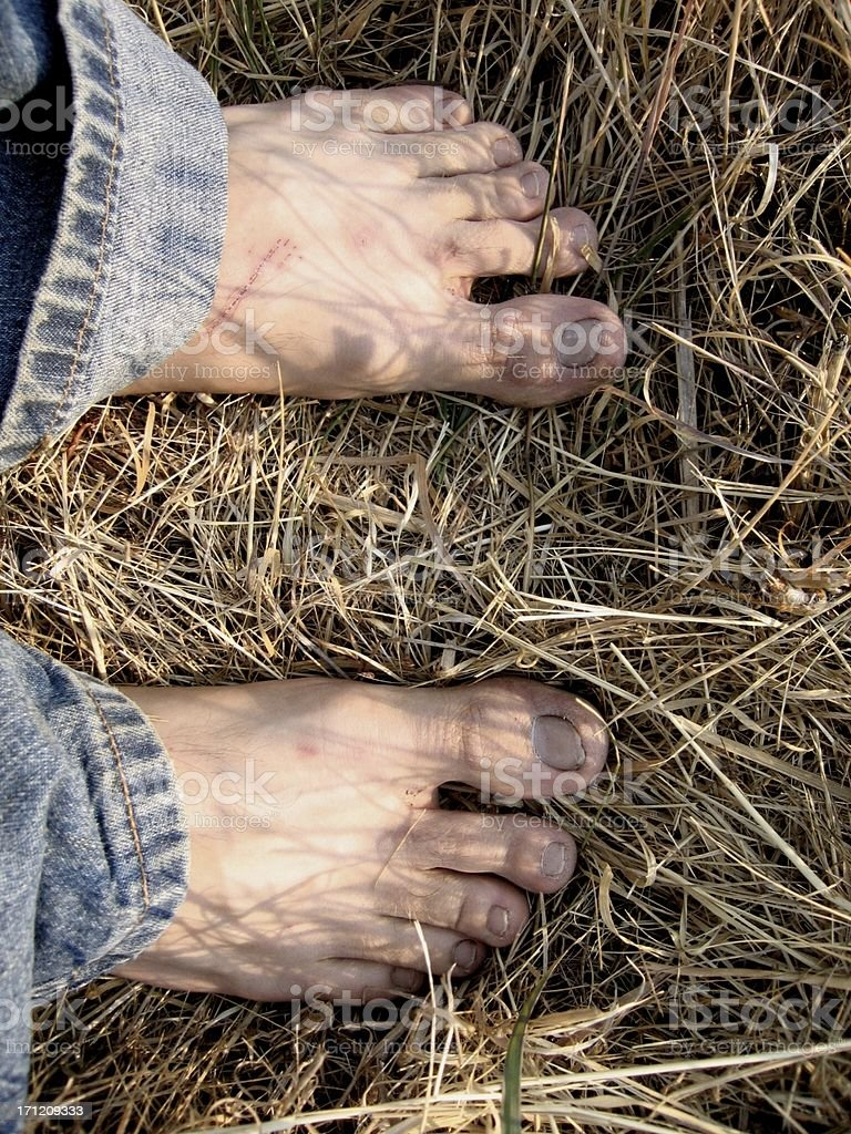 Country Feet stock photo