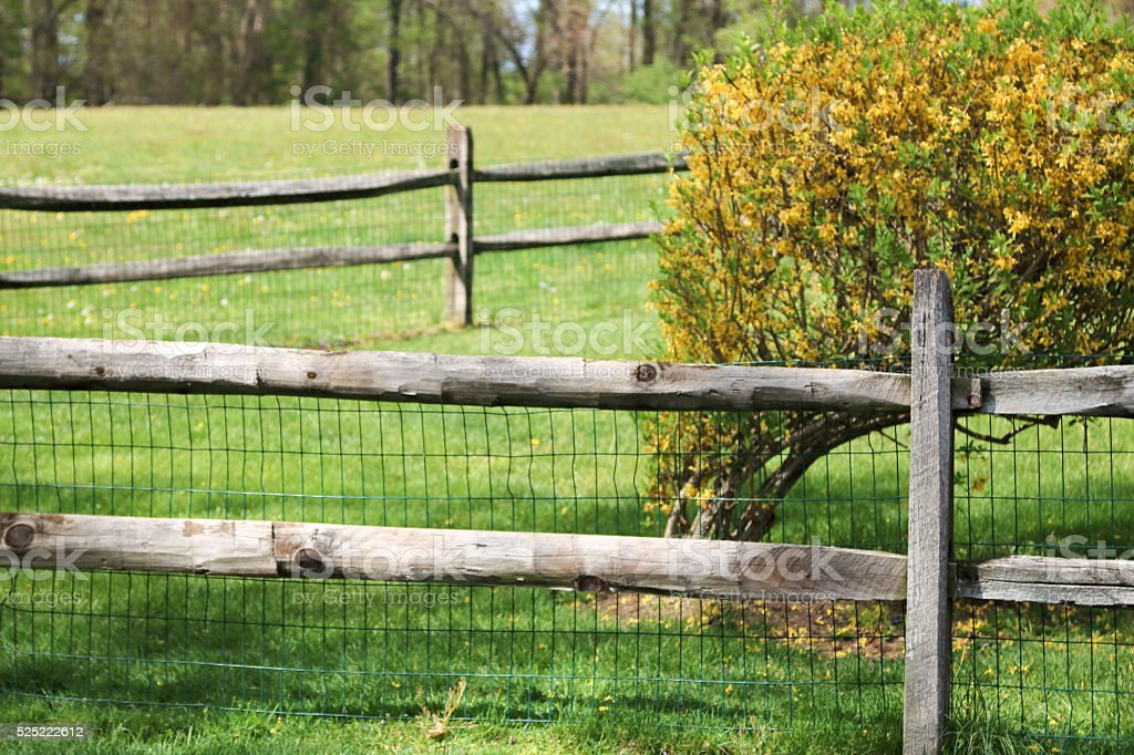 Country fence background, natural wood on grass with bush stock photo
