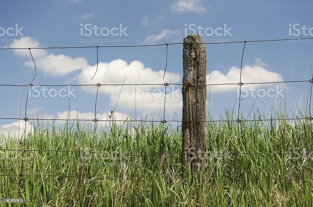 Country fencepost in long grass royalty-free stock photo