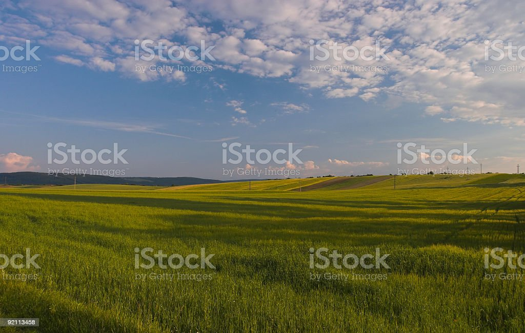 Country field royalty-free stock photo