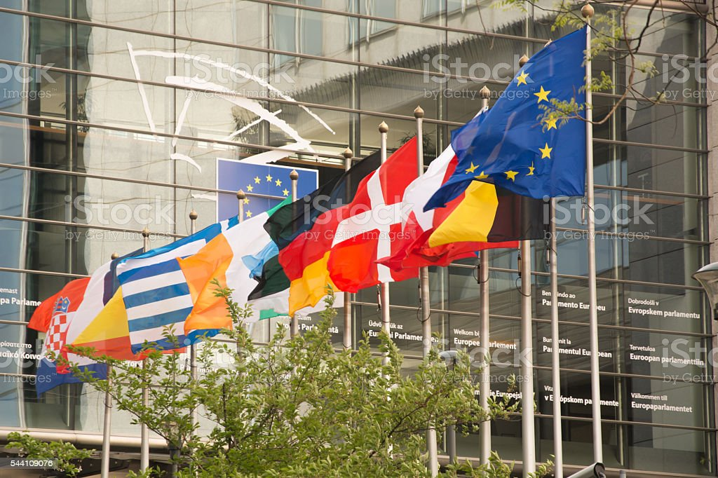 Country flags in front of the European Parliament stock photo