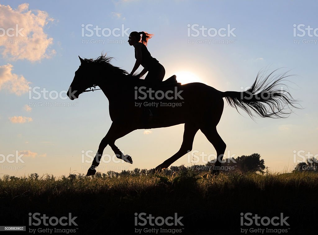 Country girl ride horseback at sunset stock photo