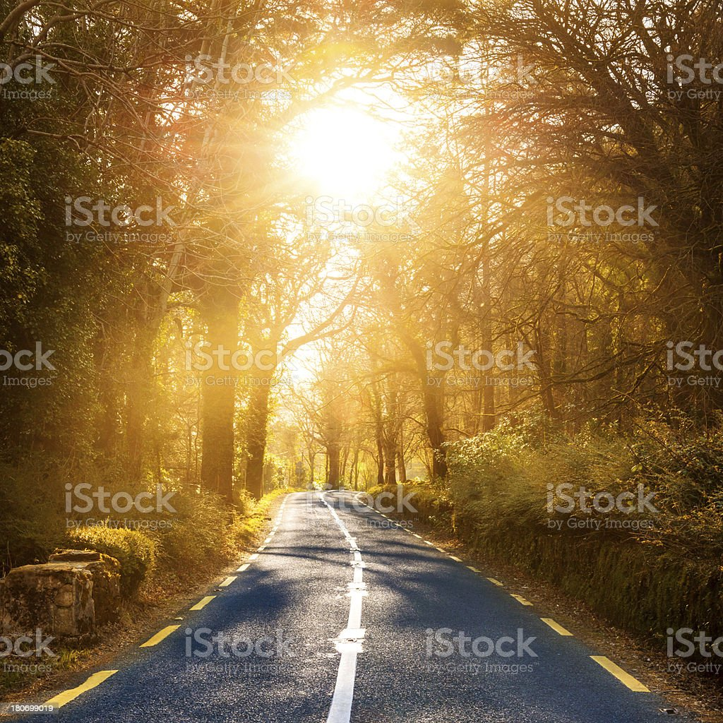 Country Highway into Sun royalty-free stock photo