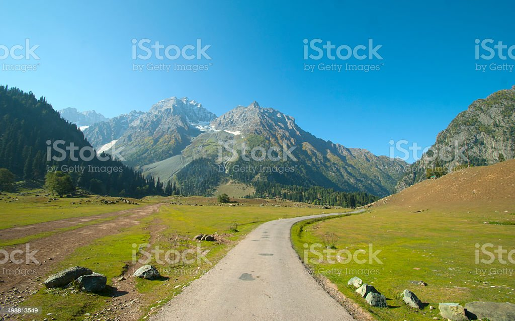 Country Highway,Road royalty-free stock photo