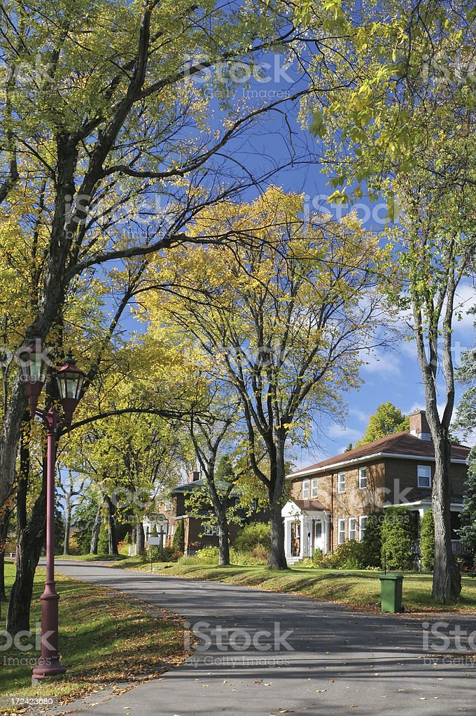 Country houses on a small road surrounded with Autumn trees royalty-free stock photo