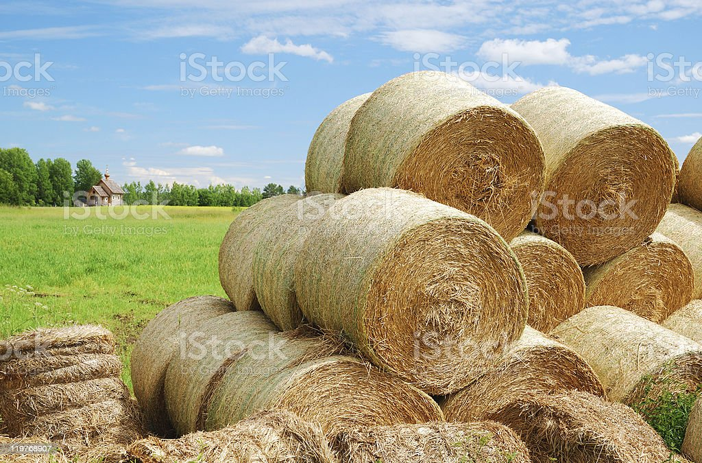 Country ladscape with heap of straw bales stock photo