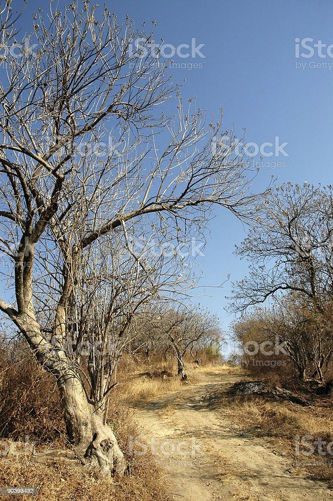 Страна Lande Стоковые фото Стоковая фотография