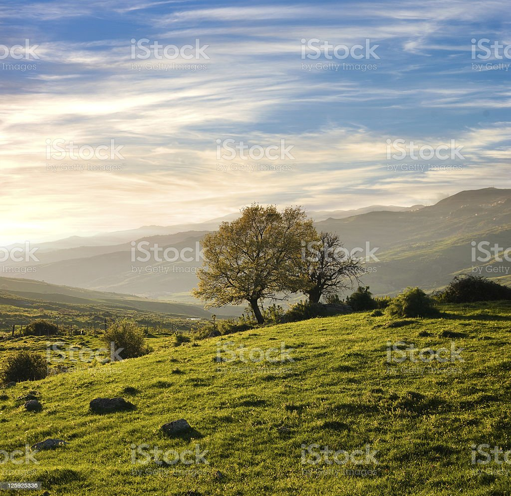 Country Landscape In A Spring Sunset royalty-free stock photo