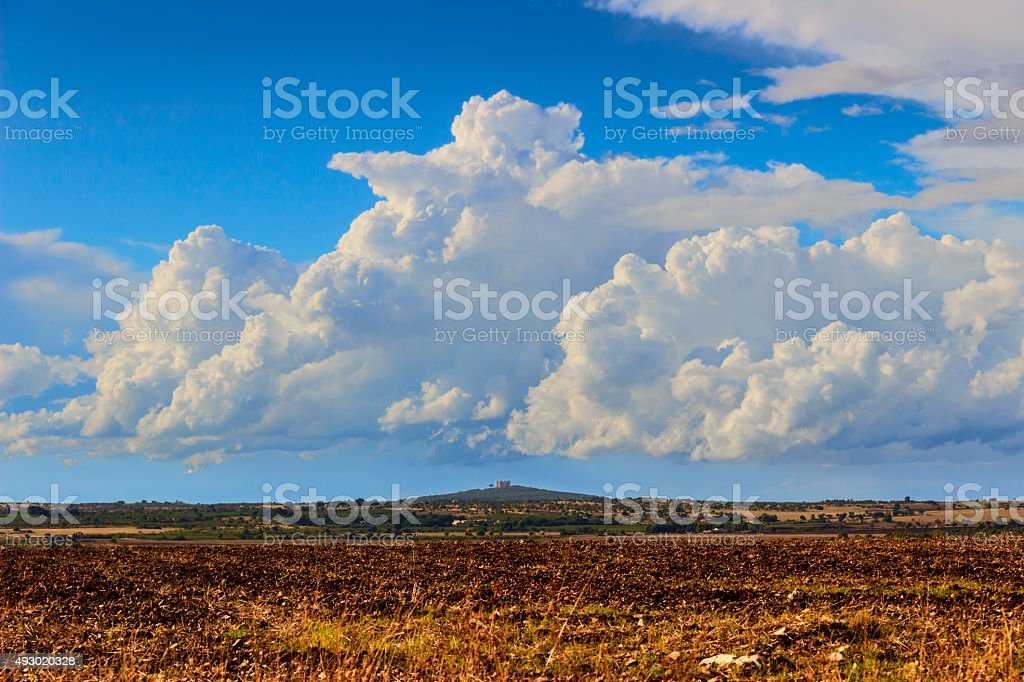 Country landscape: Murgia  Park.In the background Castel del Monte.Apulia,ITALY. stock photo