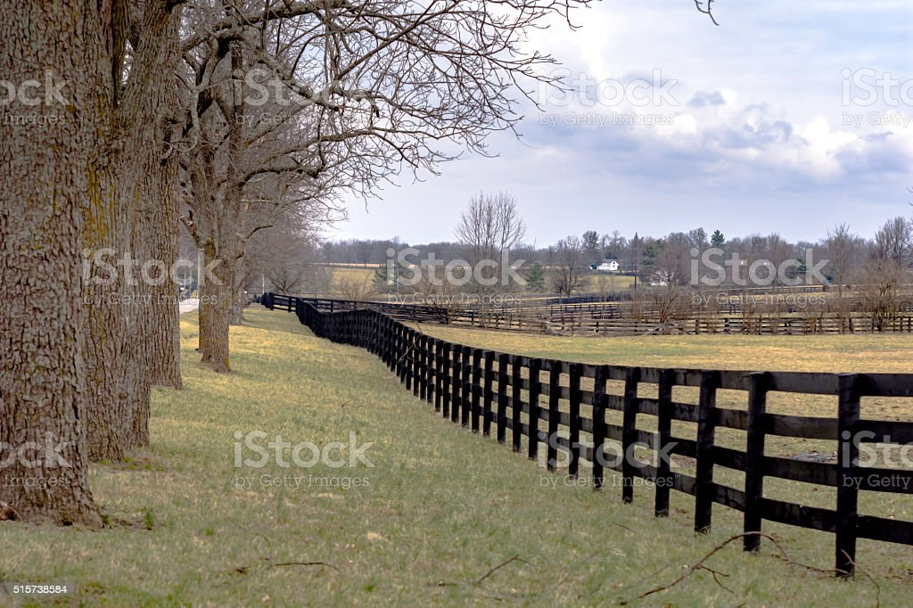 Country landscape with fenceline and trees stock photo