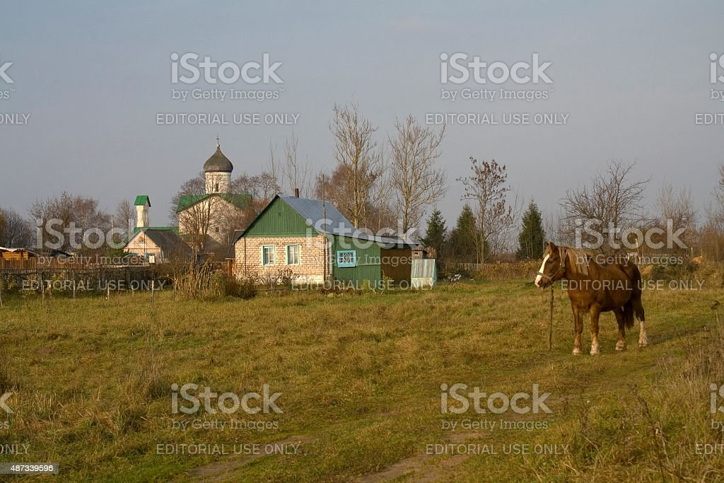 Country landscape with horse and old church stock photo