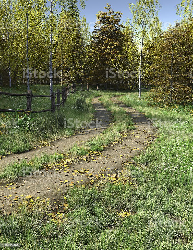 Country Lane in Autumn or Fall royalty-free stock photo