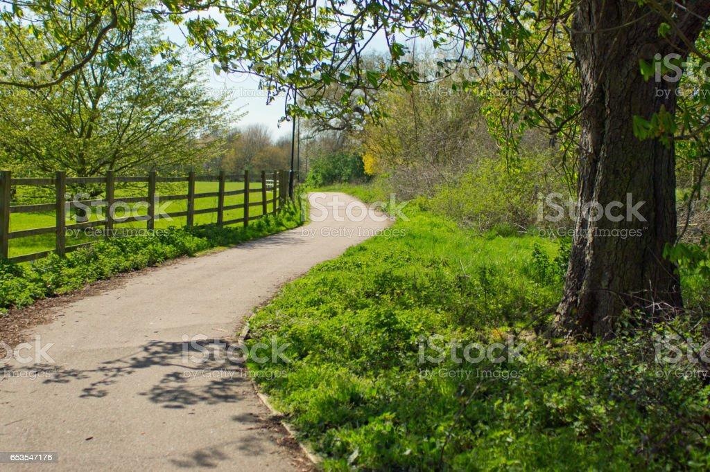 Country Lane in Huntingdon stock photo
