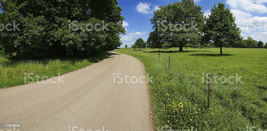 country lane royalty-free stock photo