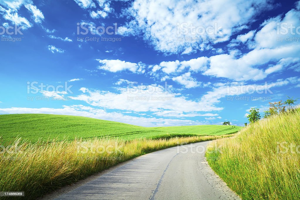 Country Road, among Spring Rolling Fields - Landscape stock photo