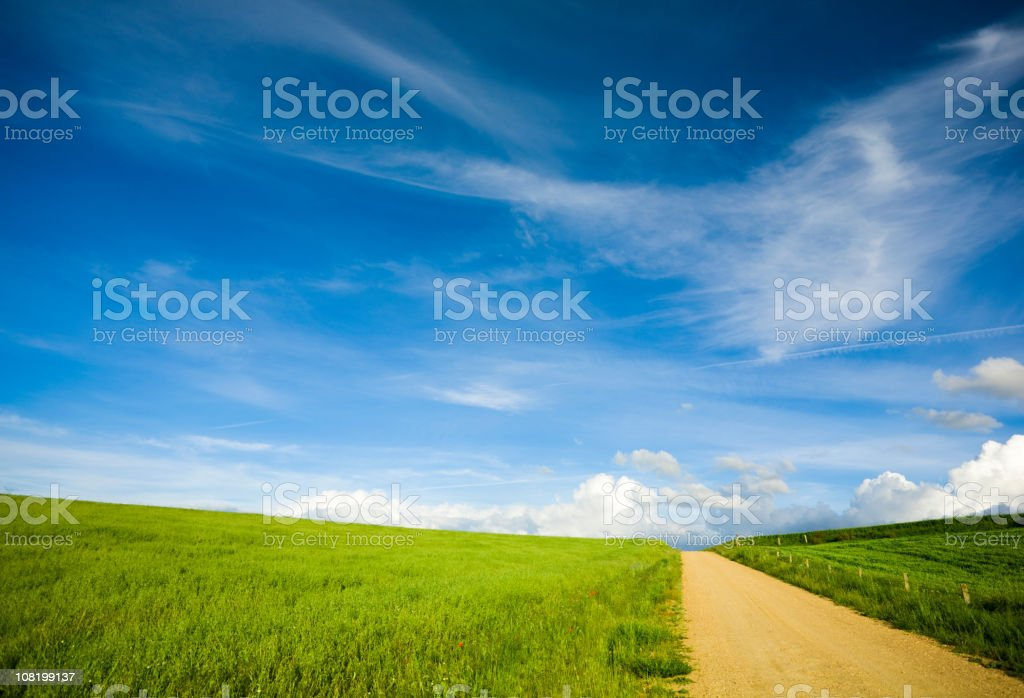 Country Road and Field royalty-free stock photo