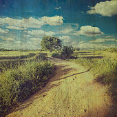 country road and field vintage with texture effect.