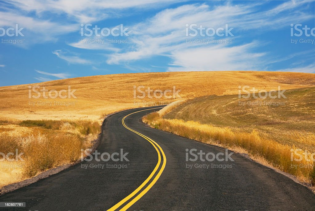 Country Road And Wheat Fields stock photo