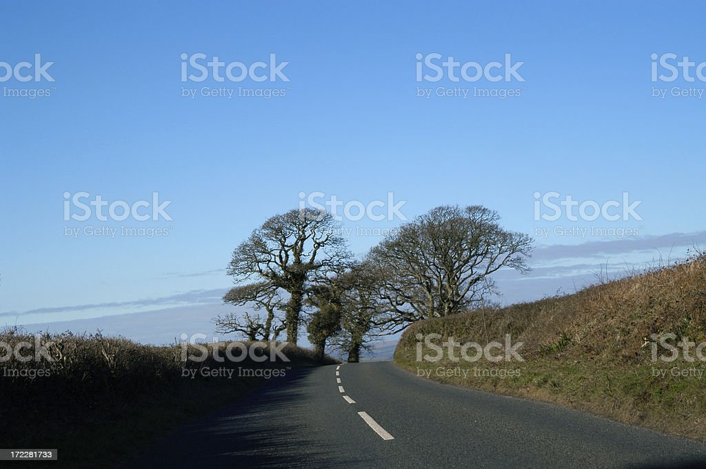 Country Road Autumn royalty-free stock photo
