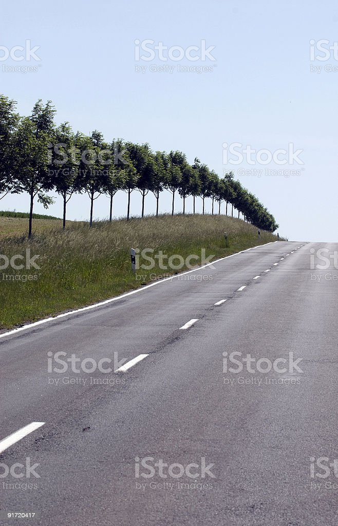 Landstra?e, Allee bei Schwerin royalty-free stock photo