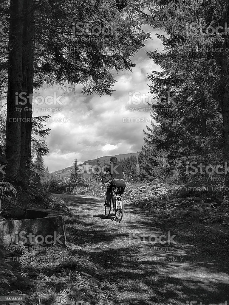 Country Road. Black an dWhite royalty-free stock photo