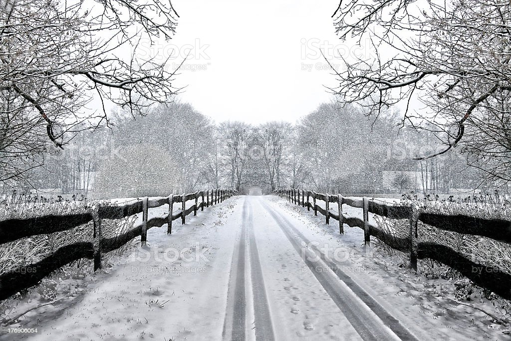 country road during winter royalty-free stock photo