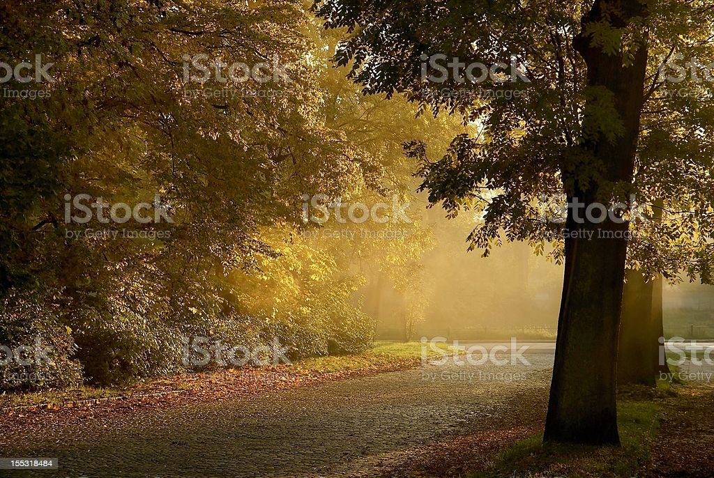 Country road in a small town at sunset royalty-free stock photo