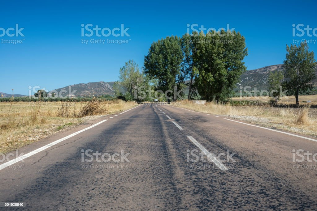 Country road in an agricultural landscape stock photo
