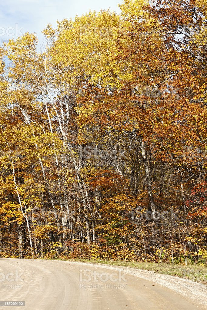 Country Road in Autumn royalty-free stock photo