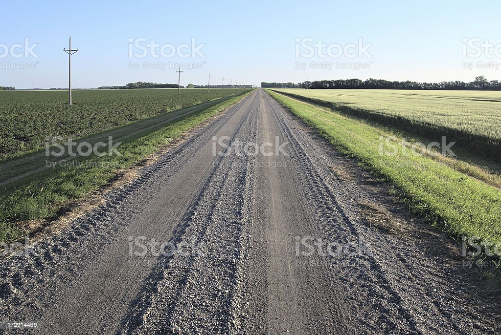 country road in early morning sunlight royalty-free stock photo