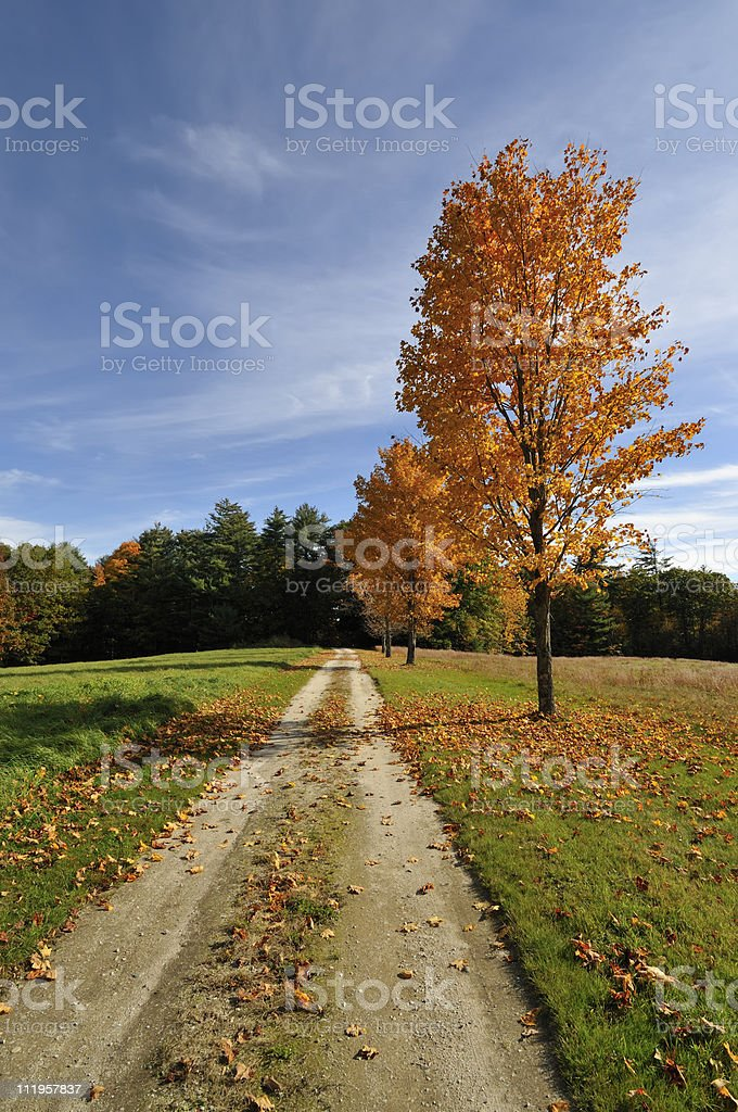 Country Road in Fall royalty-free stock photo