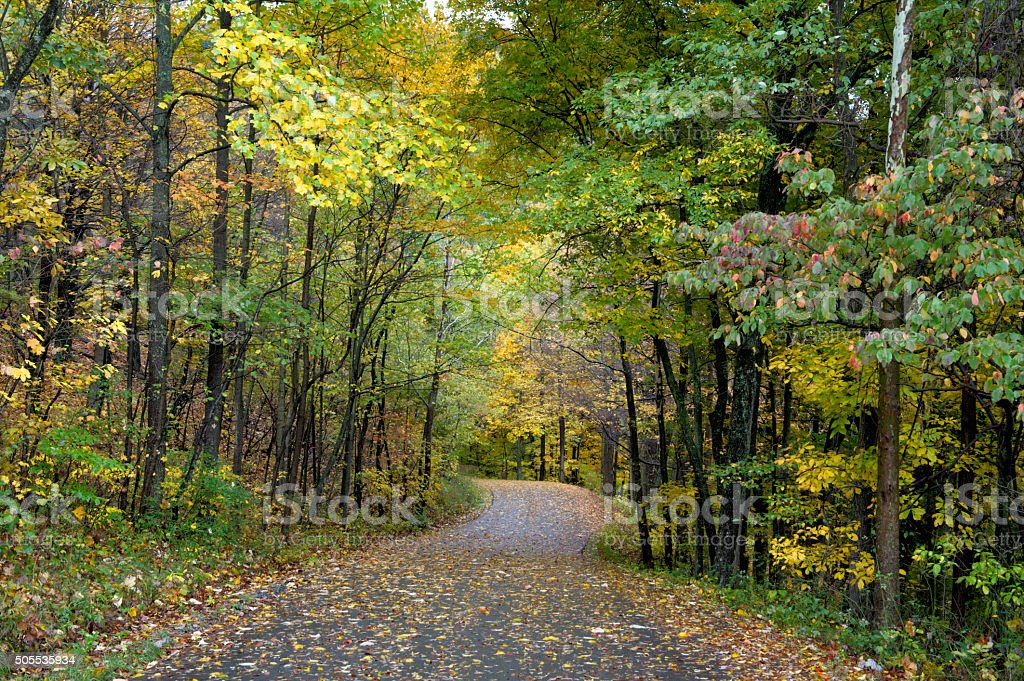 Country Road in Fall Scenery stock photo