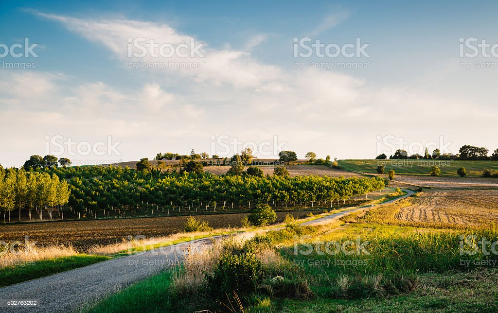Country road in Gers, France stock photo