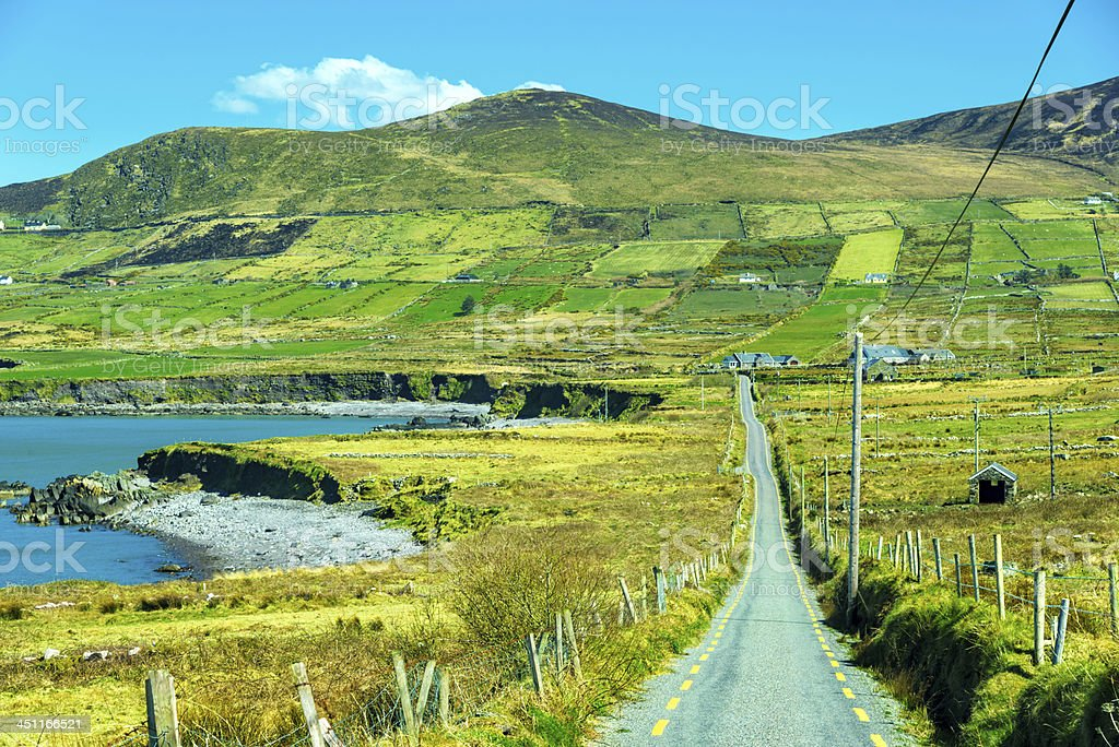 Country Road in Ireland royalty-free stock photo