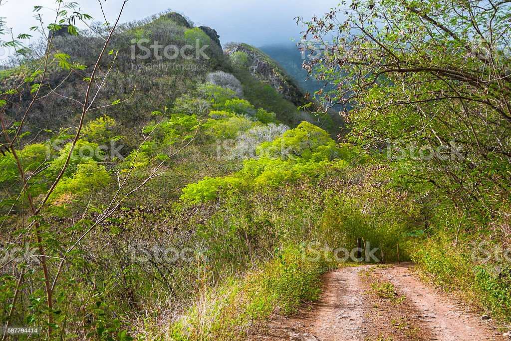 Country Road in Nuku Hiva stock photo