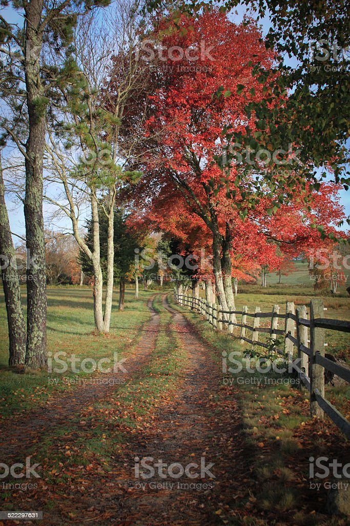 Country Road in Plymouth Massachusetts stock photo