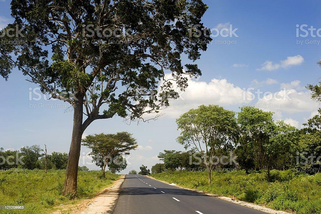Country road in Sri Lankan royalty-free stock photo