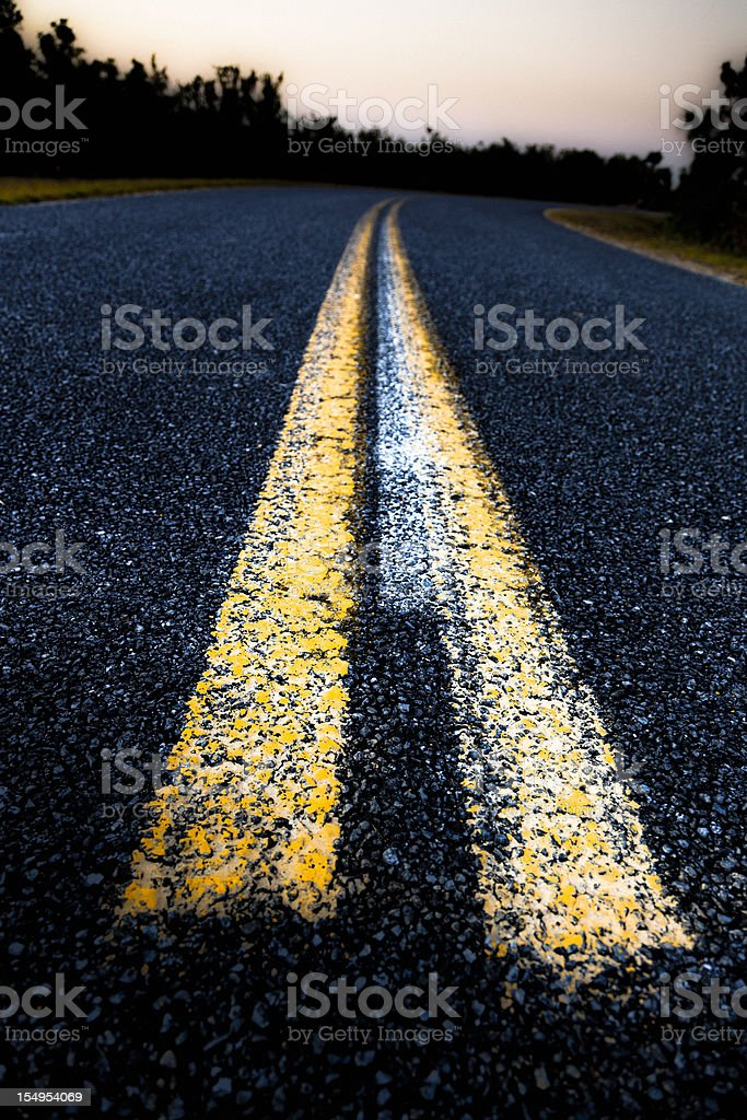 Country Road in the Everglades National Park royalty-free stock photo