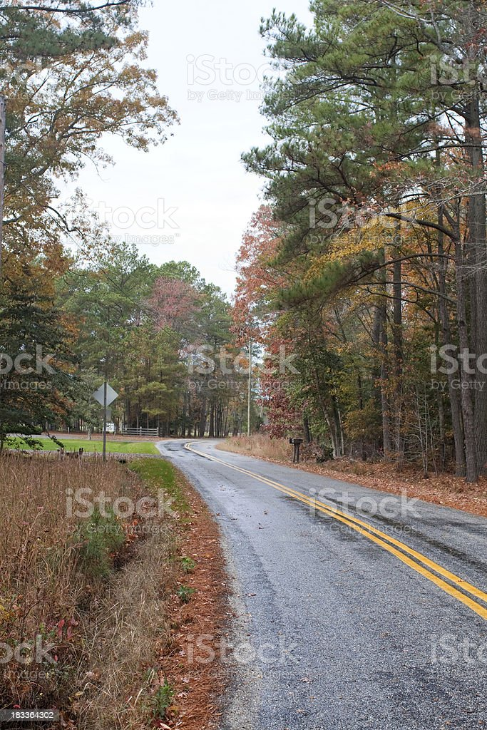 Country road in the fall foliage stock photo